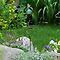 A Small Garden, Somewhere.
