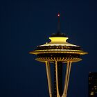 Space Needle after nightfall by Klaus Girk