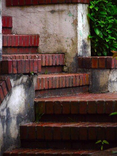 Stairs by Rae Tucker