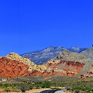 Road to Red Rock by Scott Curti