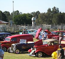 A Collection of Hot Rods. by Maureen Dodd