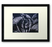 Transition in black & grey Framed Print