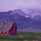 Sundown Montana  by Judy Grant
