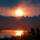 Golden Columbia River Sunrise 5 by Dawna Morton