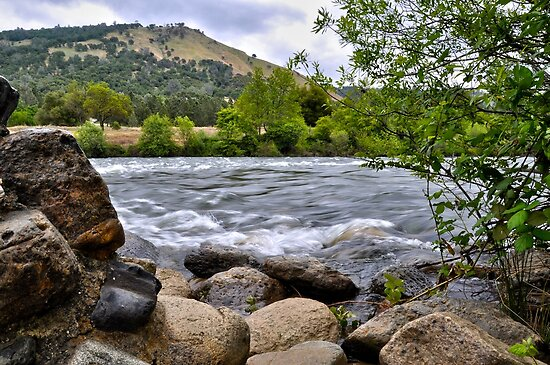 American River at Coloma, CA by Lenny La Rue, IPA