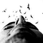 "Bodylandscapes ""Le visage"" 3/3 by Lazius Kaye"