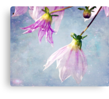 With a touch of Magic Canvas Print