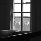 Prairie Window by Rachel Sonnenschein