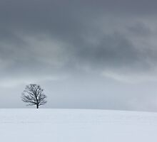 Cold And Lonely by Peter Waller