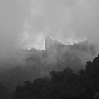 Genting Highlands by Vahid Meskoob