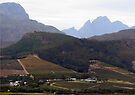 Franschhoek (Drakenstein bergreeks) by Elizabeth Kendall