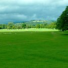 Chatsworth Estate View. by John Hare