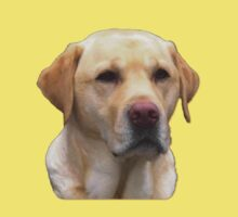 Yellow Lab Faithful Friend by gleekgirl