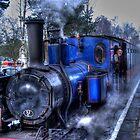 Alston Santa Train by Chris Vincent