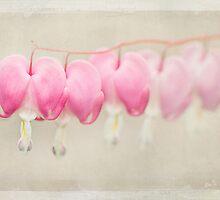 Hearts on a String by Beth Mason