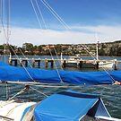 Boats by Margaret Stevens