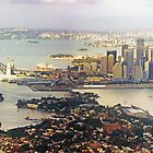 Sydney Panorama by TonyCrehan