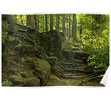 the green enchanted forest Poster
