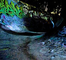 Skate bowl by Will White Photography