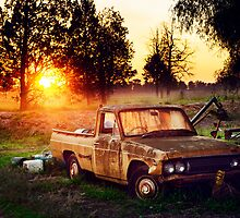 Australian ute, adored by the sun by Swirley
