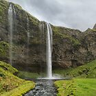 Seljalandsfoss by Steen Nielsen