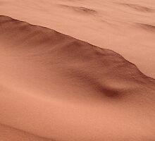 Dune by Jake Levine