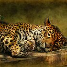 Wake Up, Sleepyhead!! by Lois  Bryan