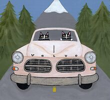 Volvo Amazon by Ryan Conners