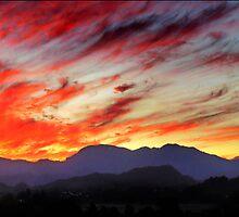 sunset panorama - tweed valley  by carol brandt