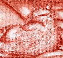 Orange Kitty in Sanguine by Amy-Elyse Neer