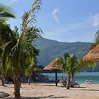 Paradise by irishlad57