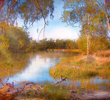 The River Murray, Along The Banks - Above Renmark, South Australia by Mark Richards
