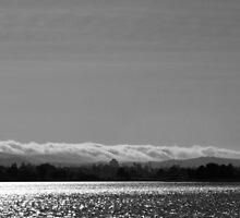 Sailboats on Shoreline Lake. Mountain View, California 2011 by Igor Pozdnyakov