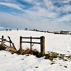 Woodham Under Snow. by barry jones