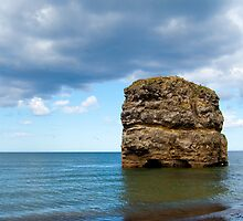 Marsden Rock by Tony Reed