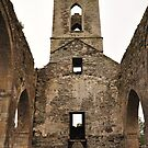 Baltinglass abbey inside view. by Finbarr Reilly