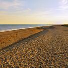 Pebble and Shingle Beach, Shoreham by Steve