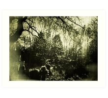 Beneath the boughs Art Print