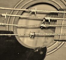 Barbed wire blues 2 by indianpeteee