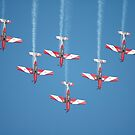 RAAF Roulettes Aerobatic Team @ Williamtown 2010 by muz2142
