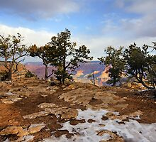 Snow on the Rim by Harry Oldmeadow
