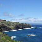 Maui's northern shore by Marjorie Wallace