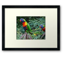 A Double Rainbow Framed Print