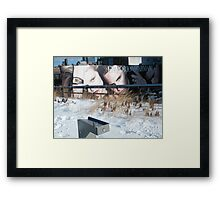 NY January High Line in Snow, New York's Elevated Garden and Walking Path Framed Print