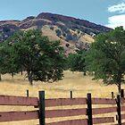 Fenced in by MarthaBurns