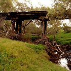 Old Nasen Bridge Chapman Valley WA by Tawnydal