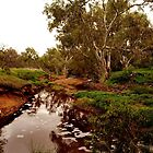 Flowing Creek, Chapman Valley WA by Tawnydal