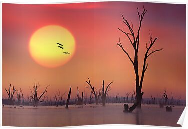 Setting Sun - Lake Mulwala by Hans Kawitzki