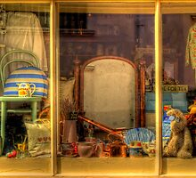 Shop Window by ajgosling