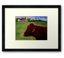 Ruby Coo Framed Print